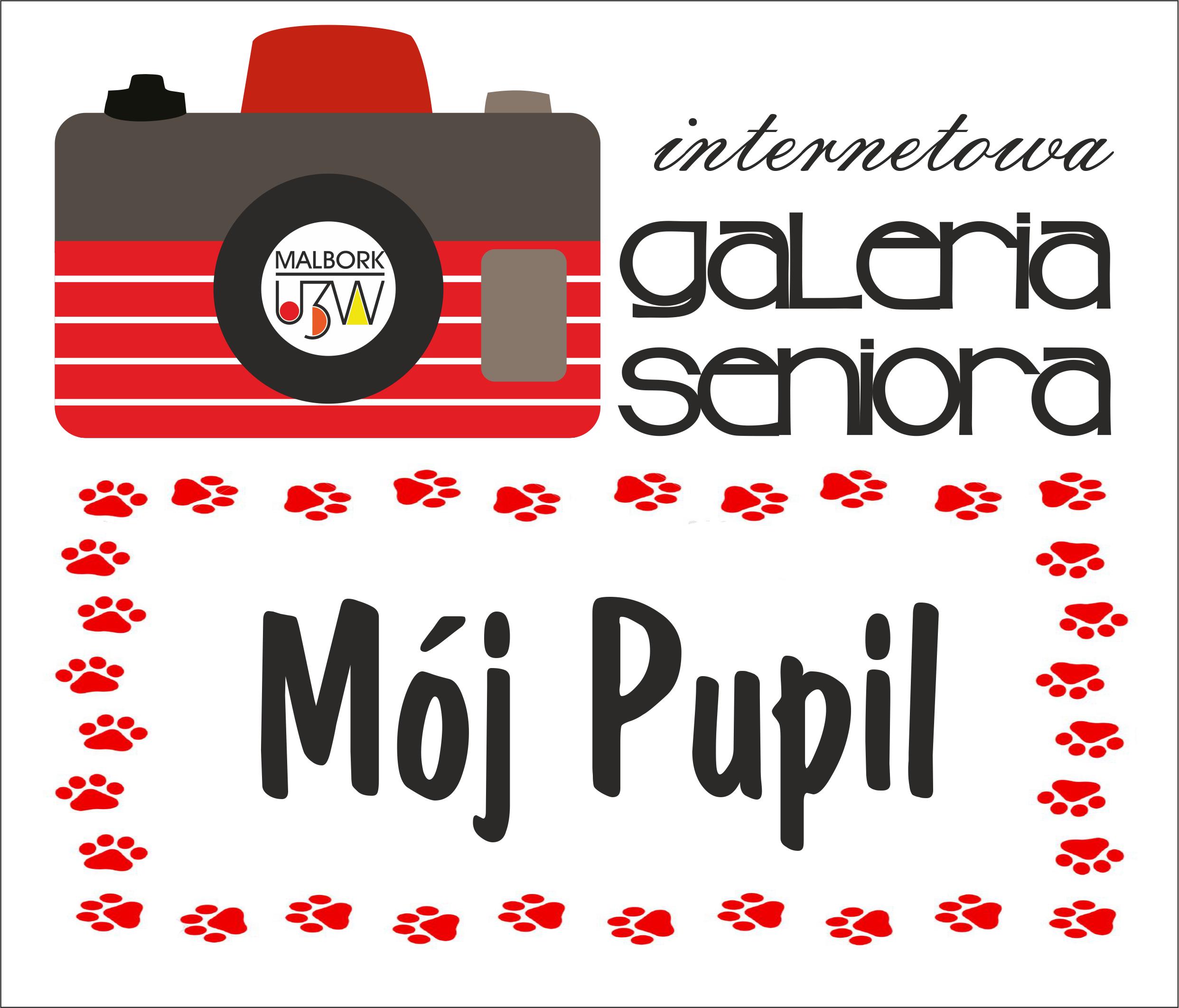 pupil (1)